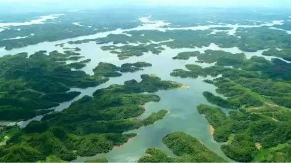 南城洪门湖国家湿地公园.jpg